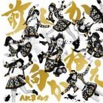AKB48 大島優子